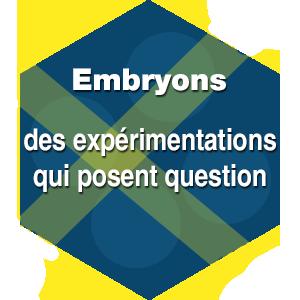 Embryons : des expérimentations qui posent question