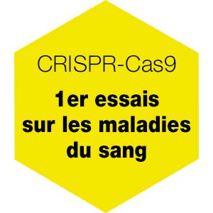 CRISPR-Cas9 : 1er essais sur les maladies du sang